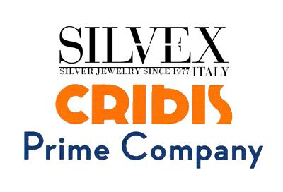 Rating Cribis D&B Solo Logo